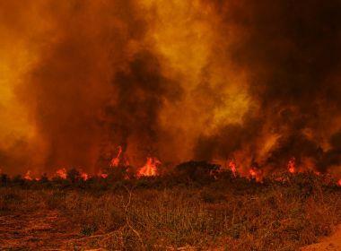 Comissão de parlamentares visita áreas de queimadas no Pantanal