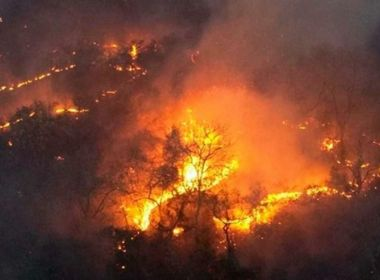 Justiça culpa estados e STF por demora no uso da Força Nacional contra queimadas