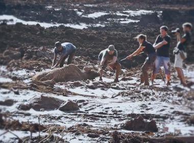 Justiça obriga Vale a socorrer animais atingidos pela lama em Brumadinho