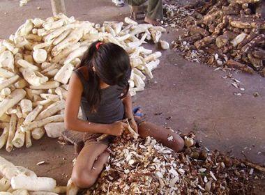 Trabalho infantil na agricultura é um dos piores para infância, alerta procuradora