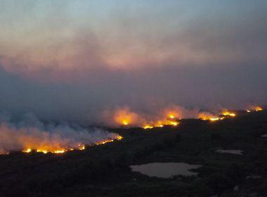OAB cobra investigação e medidas de combate a incêndios no Pantanal