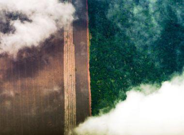 AGU cobra R$ 893 milhões na Justiça a desmatadores da Amazônia