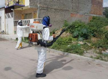 Feira: Cidade registra 16 casos de leishmaniose neste ano