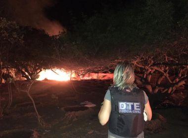 Juazeiro: Polícia destrói plantação com 50 mil pés de maconha