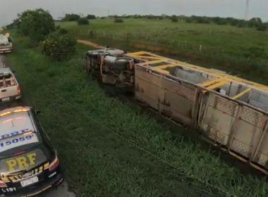 Acidente na BR-116: caminhão cegonha tomba e danifica onze carros em Vitória da Conquista