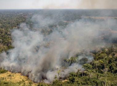 Porto Seguro: Incêndio atinge área de 8 km² em aldeia indígena