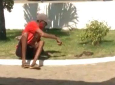 Recôncavo: Após tentar beijar cobra, homem é picado e leva animal para  UPA