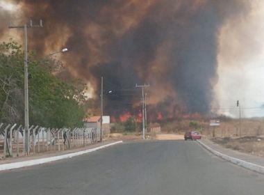 Ibotirama: Incêndio atinge área de vegetação; não há registro de feridos