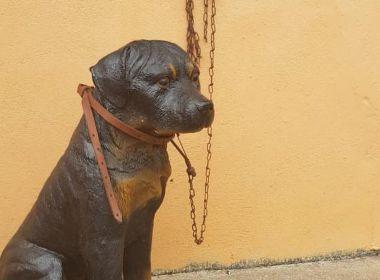PM de Minas recebe denúncia de maus tratos a animal e descobre que cão era de plástico