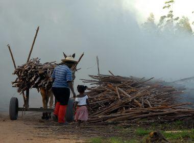 Suspensão de aulas por colheita visa diminuir evasão, mas pode respaldar trabalho infantil