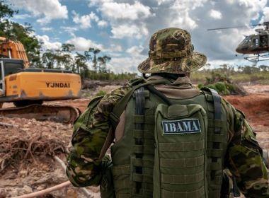 Advertências e multas por crimes contra a flora na Amazônia Legal caem 23% em 2019