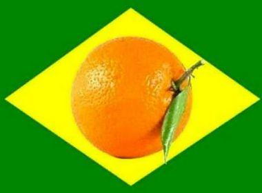 PF vai usar sistema de inteligência para identificar candidatos 'laranjas'