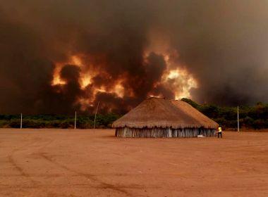 Número de queimadas na Amazônia alcança novo recorde e já supera marca de 2010