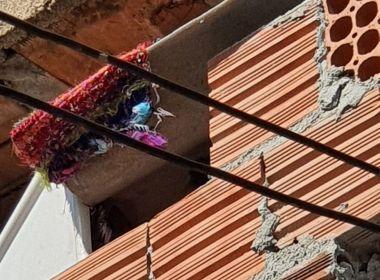 PM resgata criança mantida acorrentada em barril e prende três por tortura em Campinas