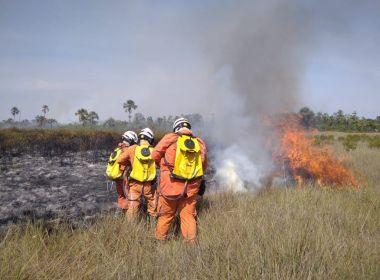 Aviões do Governo do Estado reforçam combate aos incêndios florestais na Bahia