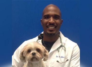 Veterinário é condenado a 22 anos de prisão por abusar sexualmente de cães nos EUA