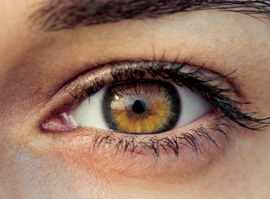 Pesquisadores criam novo meio de regenerar retina através de células-tronco