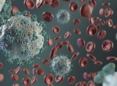 Variante britânica do coronavírus aumenta risco de morte em 61%, indica estudo